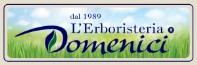 logo domenici